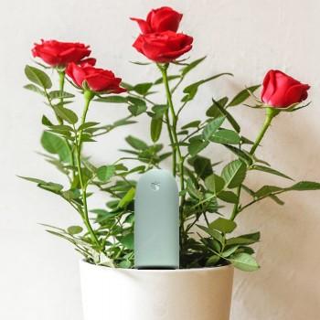 Xiaomi Mija Flowers And Plants Grass Detector Plant Detector Soil Photometric Analyzer